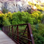 Fall in Provo Canyon